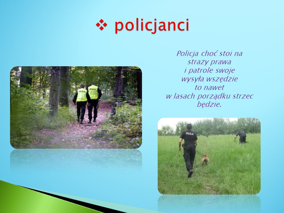 Policja choć stoi na straży prawa i patrole swoje wysyła wszędzie to nawet w lasach porządku strzec będzie.