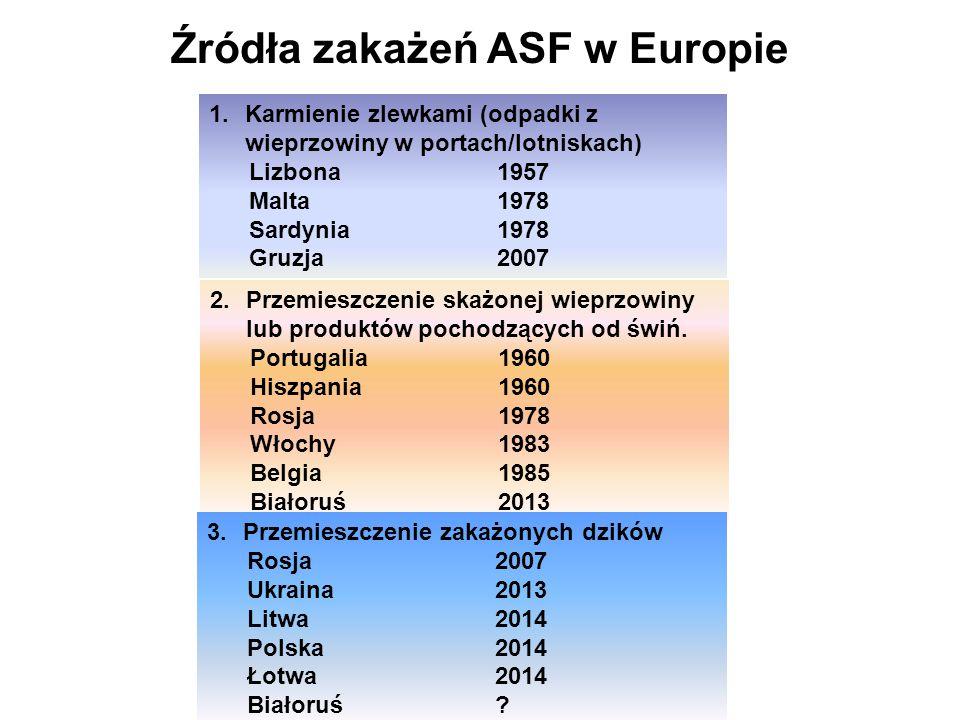Źródła zakażeń ASF w Europie 1.Karmienie zlewkami (odpadki z wieprzowiny w portach/lotniskach) Lizbona 1957 Malta 1978 Sardynia1978 Gruzja 2007 2.Przemieszczenie skażonej wieprzowiny lub produktów pochodzących od świń.