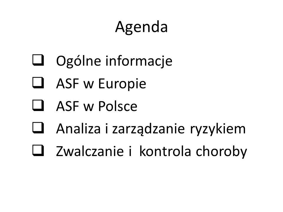 Występowanie Wg OIE Subsaharyjska cześć Afryki Europa (Włochy -Sardynia, Rosja, Białoruś, Ukraina, Polska, kraje nadbałtyckie)