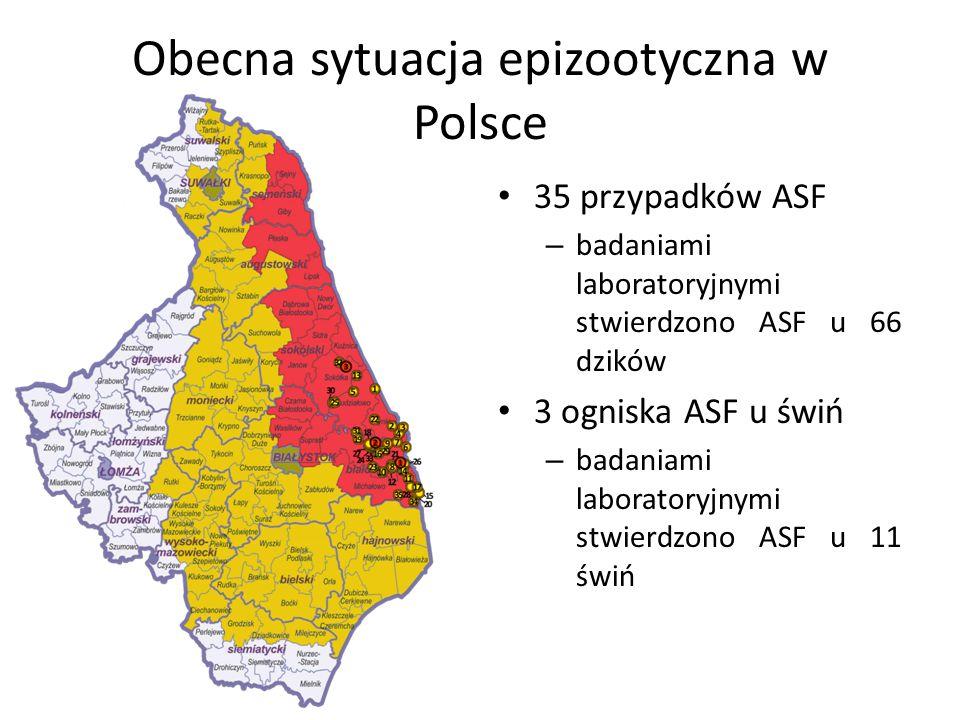 Obecna sytuacja epizootyczna w Polsce 35 przypadków ASF – badaniami laboratoryjnymi stwierdzono ASF u 66 dzików 3 ogniska ASF u świń – badaniami laboratoryjnymi stwierdzono ASF u 11 świń