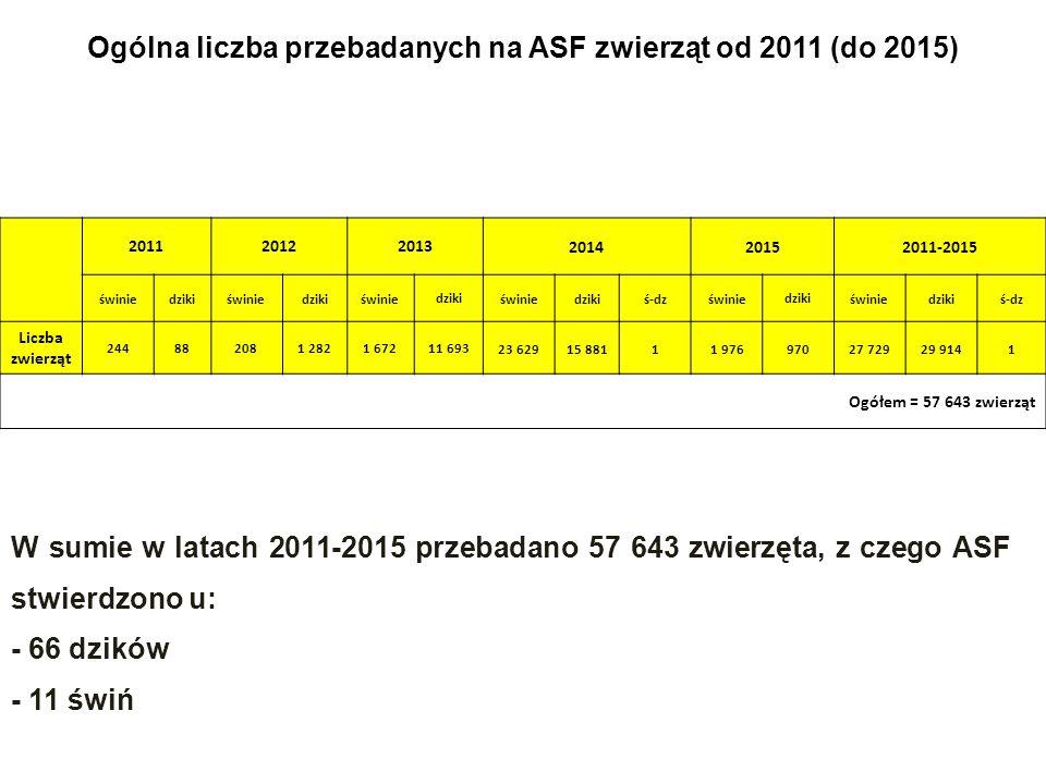 Ogólna liczba przebadanych na ASF zwierząt od 2011 (do 2015) 201120122013 201420152011-2015 świniedzikiświniedzikiświniedziki świniedzikiś-dz świniedziki świniedzikiś-dz Liczba zwierząt 244882081 2821 67211 693 23 62915 88111 97697027 72929 9141 Ogółem = 57 643 zwierząt W sumie w latach 2011-2015 przebadano 57 643 zwierzęta, z czego ASF stwierdzono u: - 66 dzików - 11 świń