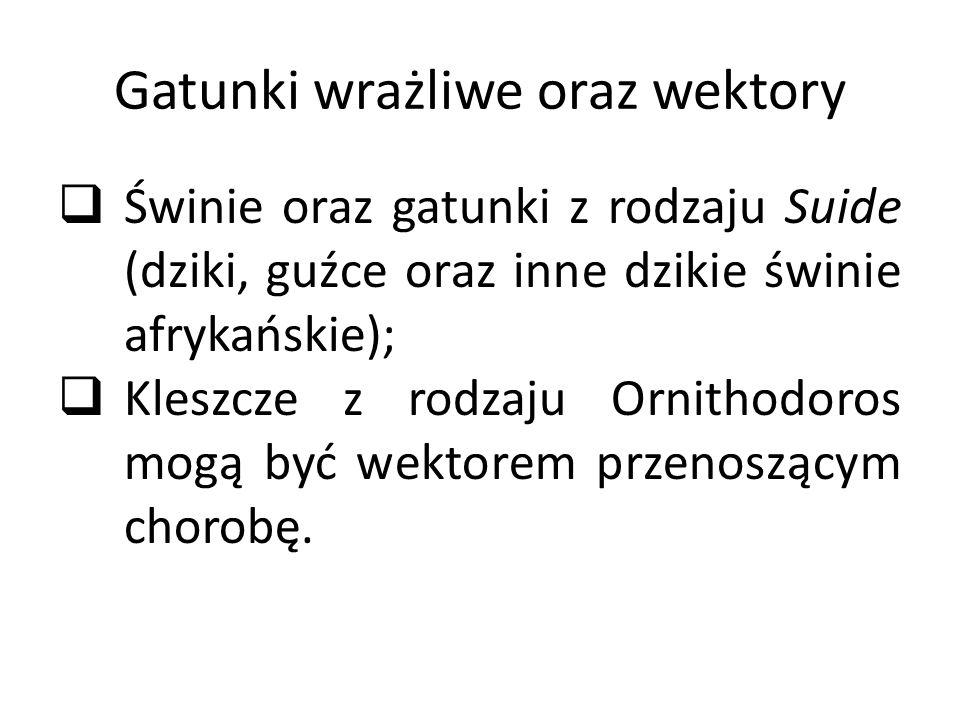 Gatunki wrażliwe oraz wektory  Świnie oraz gatunki z rodzaju Suide (dziki, guźce oraz inne dzikie świnie afrykańskie);  Kleszcze z rodzaju Ornithodoros mogą być wektorem przenoszącym chorobę.