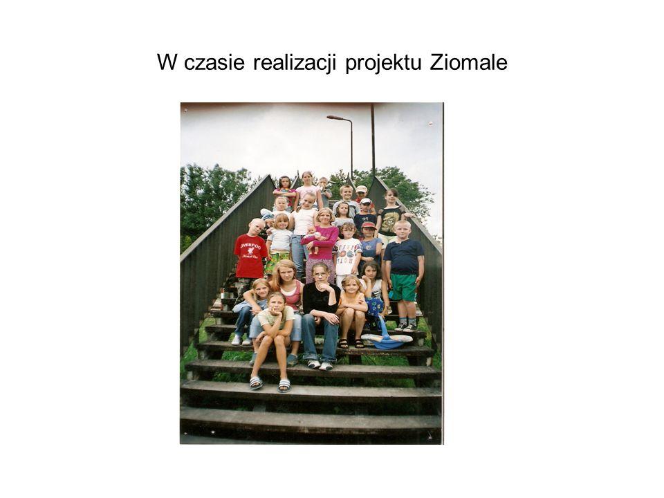 W czasie realizacji projektu Ziomale