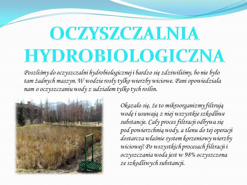 Poszliśmy do oczyszczalni hydrobiologicznej i bardzo się zdziwiliśmy, bo nie było tam żadnych maszyn.