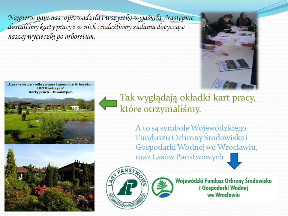 Kiedy otworzyliśmy karty pracy zobaczyliśmy zadania do wykonania Zadania w rozdziale I : Wyjaśnij pojęcie arboretum.