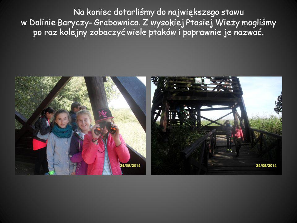 Na koniec dotarliśmy do największego stawu w Dolinie Baryczy- Grabownica. Z wysokiej Ptasiej Wieży mogliśmy po raz kolejny zobaczyć wiele ptaków i pop