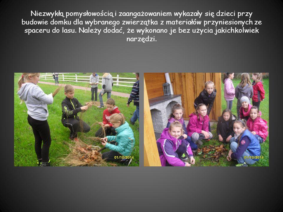 Niezwykłą pomysłowością i zaangażowaniem wykazały się dzieci przy budowie domku dla wybranego zwierzątka z materiałów przyniesionych ze spaceru do las