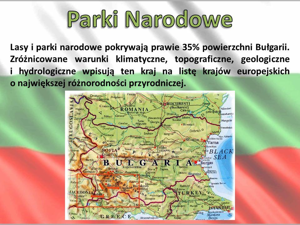 Lasy i parki narodowe pokrywają prawie 35% powierzchni Bułgarii. Zróżnicowane warunki klimatyczne, topograficzne, geologiczne i hydrologiczne wpisują