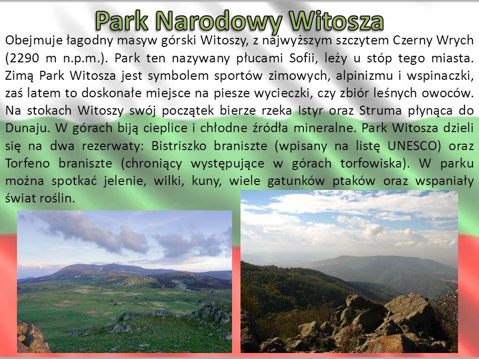 Obejmuje łagodny masyw górski Witoszy, z najwyższym szczytem Czerny Wrych (2290 m n.p.m.). Park ten nazywany płucami Sofii, leży u stóp tego miasta. Z