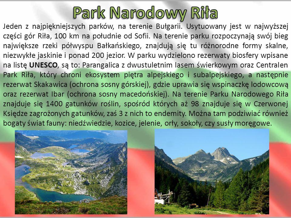 Jeden z najpiękniejszych parków, na terenie Bułgarii. Usytuowany jest w najwyższej części gór Riła, 100 km na południe od Sofii. Na terenie parku rozp