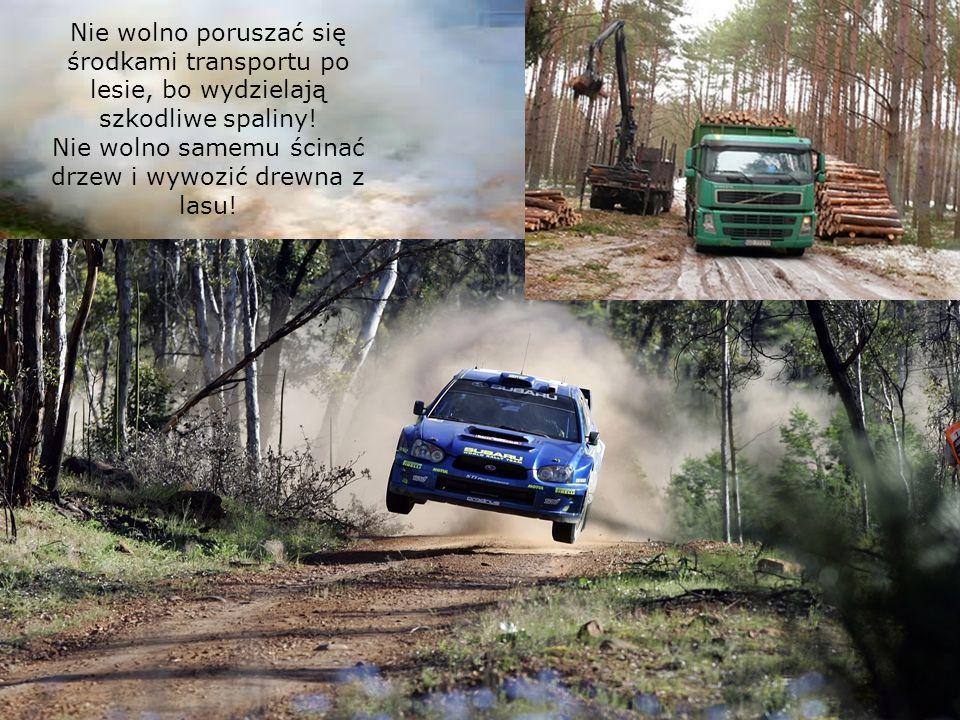 Nie wolno poruszać się środkami transportu po lesie, bo wydzielają szkodliwe spaliny.