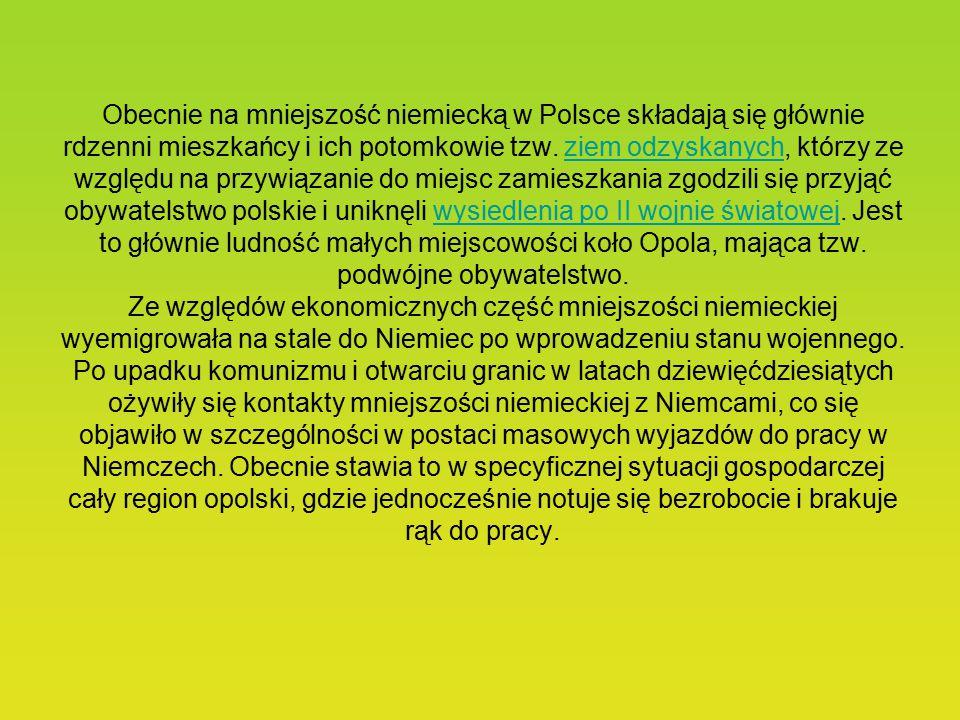 Innymi partiami i związkami politycznymi Niemców w II Rzeczypospolitej były: m.in. Związek Niemczyzny dla Ochrony Praw Mniejszości w Polsce (1921-23),