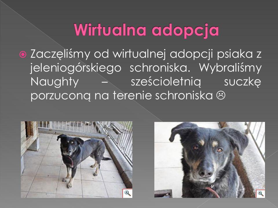  Maja L.i Maja Z. opowiadały nam na temat różnych ras psów.