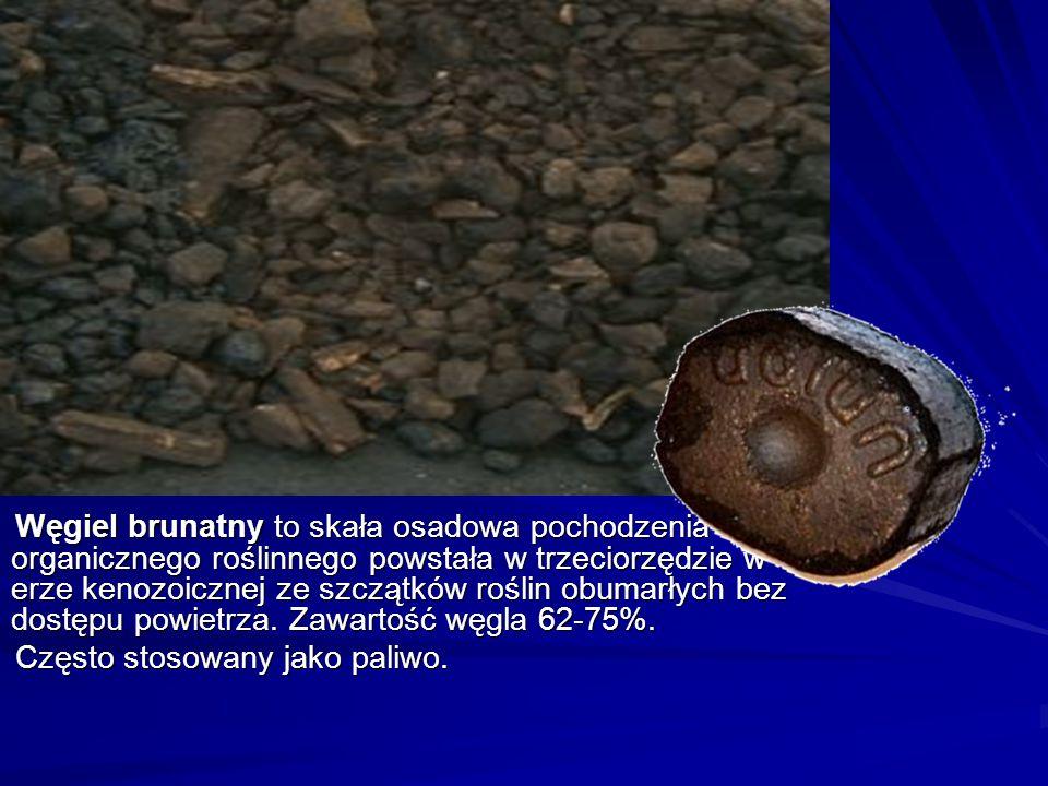 Węgiel brunatny to skała osadowa pochodzenia organicznego roślinnego powstała w trzeciorzędzie w erze kenozoicznej ze szczątków roślin obumarłych bez