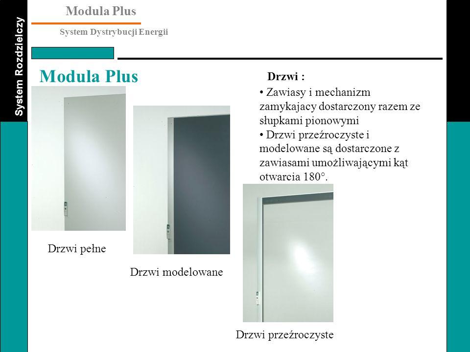 System Rozdzielczy Modula Plus System Dystrybucji Energii Modula Plus Zawiasy i mechanizm zamykajacy dostarczony razem ze słupkami pionowymi Drzwi prz