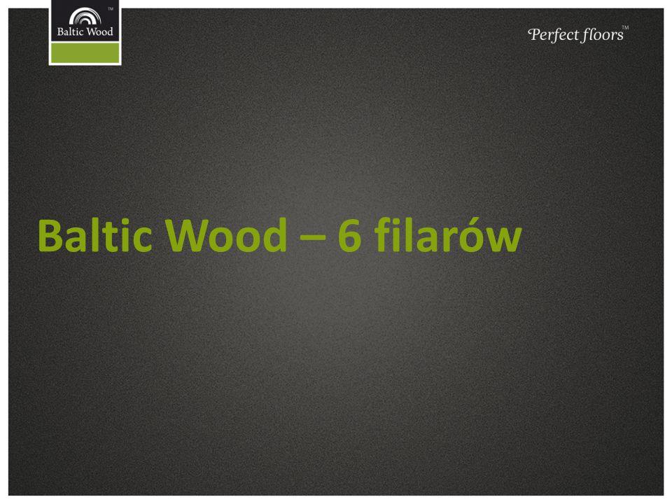 Baltic Wood – 6 filarów