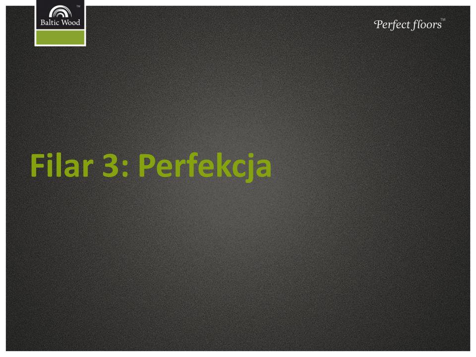 Filar 3: Perfekcja