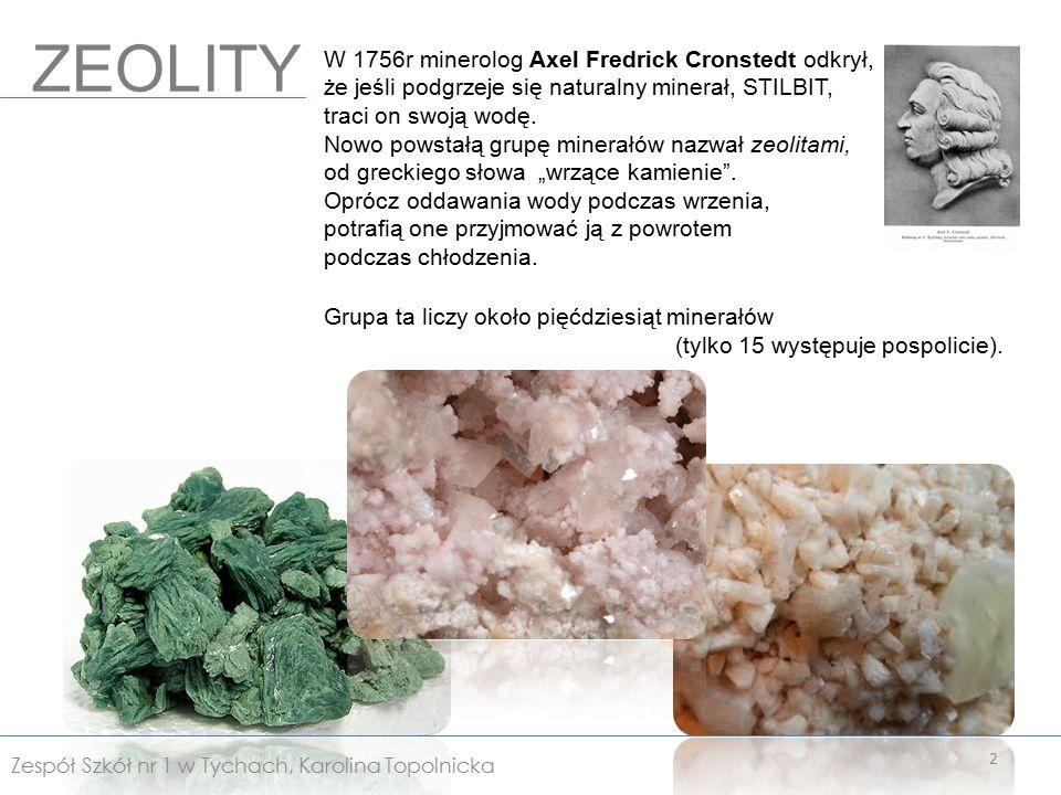 Stanowią dodatek paszowy i nawozowy oraz stosowane są w kondycjonerze gleby*.