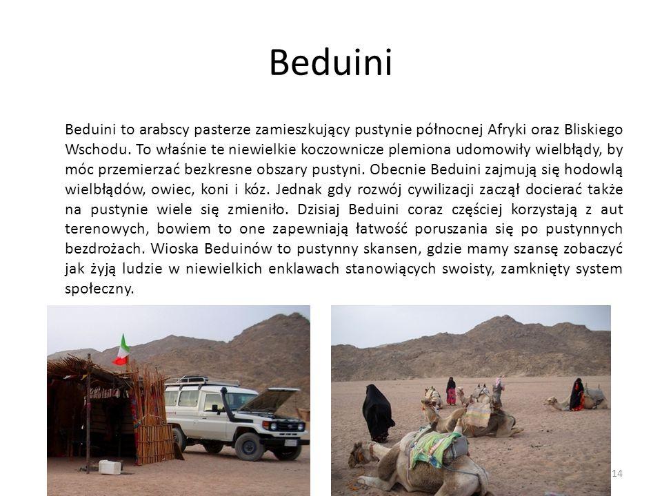 Beduini Beduini to arabscy pasterze zamieszkujący pustynie północnej Afryki oraz Bliskiego Wschodu. To właśnie te niewielkie koczownicze plemiona udom