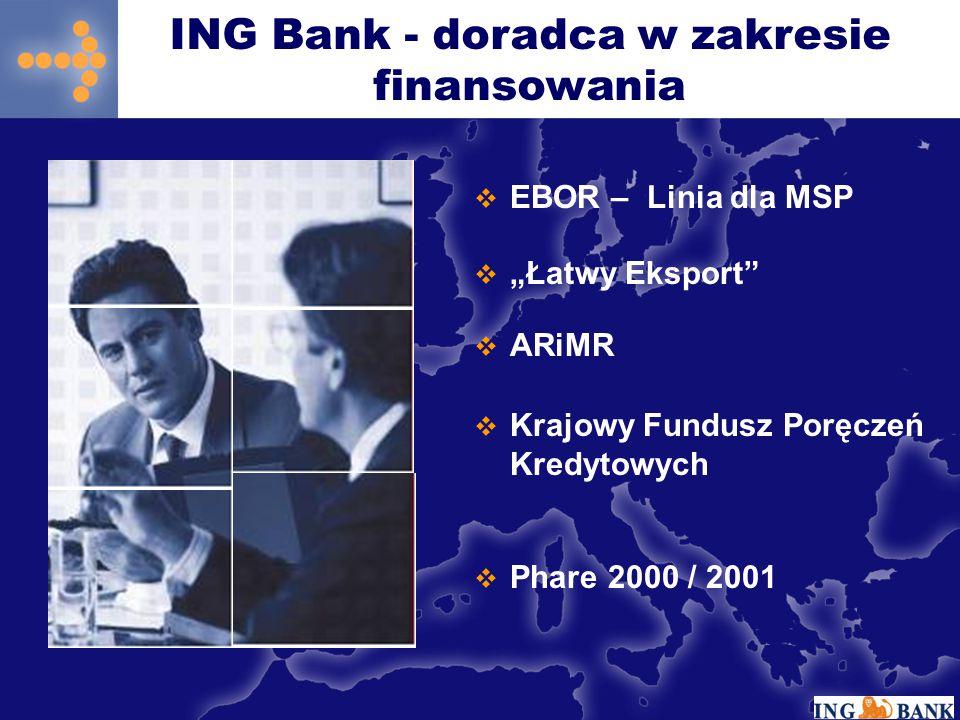 """ EBOR – Linia dla MSP  """"Łatwy Eksport""""  ARiMR  Krajowy Fundusz Poręczeń Kredytowych  Phare 2000 / 2001 ING Bank - doradca w zakresie finansowania"""