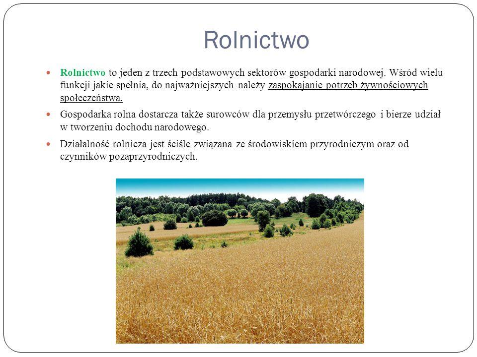 Rolnictwo Rolnictwo to jeden z trzech podstawowych sektorów gospodarki narodowej. Wśród wielu funkcji jakie spełnia, do najważniejszych należy zaspoka