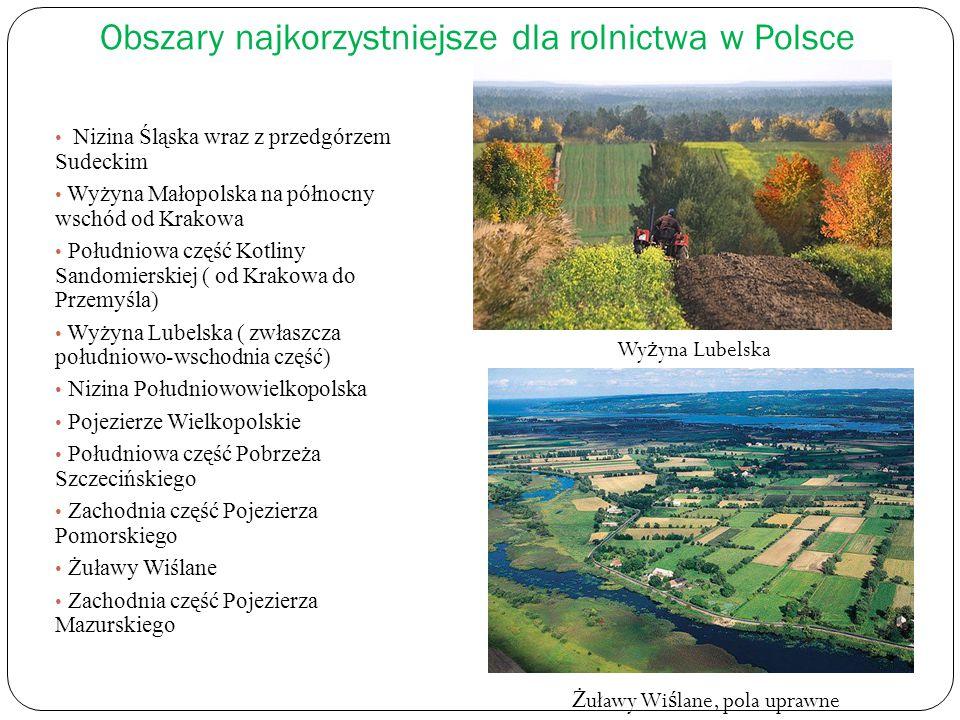Obszary najkorzystniejsze dla rolnictwa w Polsce Nizina Śląska wraz z przedgórzem Sudeckim Wyżyna Małopolska na północny wschód od Krakowa Południowa