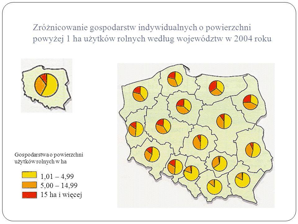 Zróżnicowanie gospodarstw indywidualnych o powierzchni powyżej 1 ha użytków rolnych według województw w 2004 roku Gospodarstwa o powierzchni użytków r
