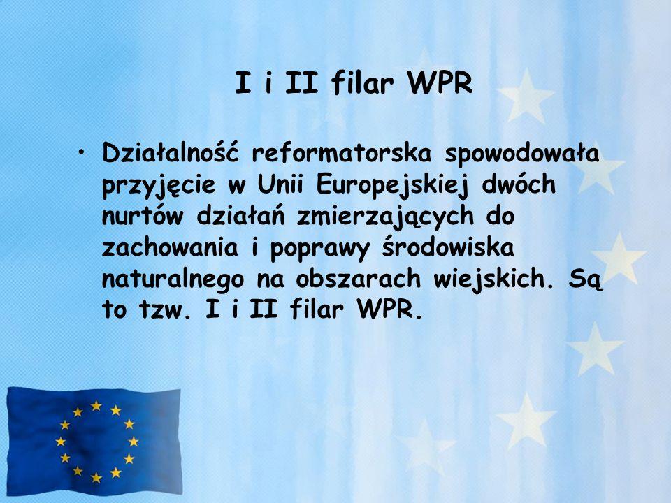 I i II filar WPR Działalność reformatorska spowodowała przyjęcie w Unii Europejskiej dwóch nurtów działań zmierzających do zachowania i poprawy środow