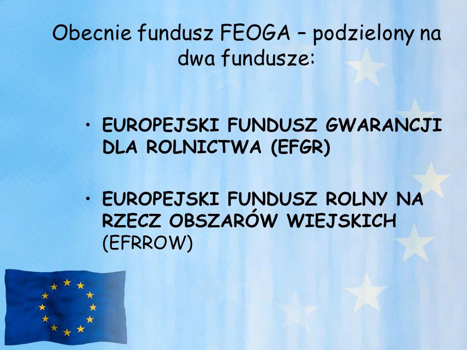 Obecnie fundusz FEOGA – podzielony na dwa fundusze: EUROPEJSKI FUNDUSZ GWARANCJI DLA ROLNICTWA (EFGR) EUROPEJSKI FUNDUSZ ROLNY NA RZECZ OBSZARÓW WIEJS