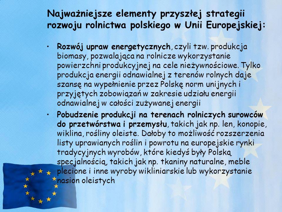 Najważniejsze elementy przyszłej strategii rozwoju rolnictwa polskiego w Unii Europejskiej: Rozwój upraw energetycznych, czyli tzw. produkcja biomasy,