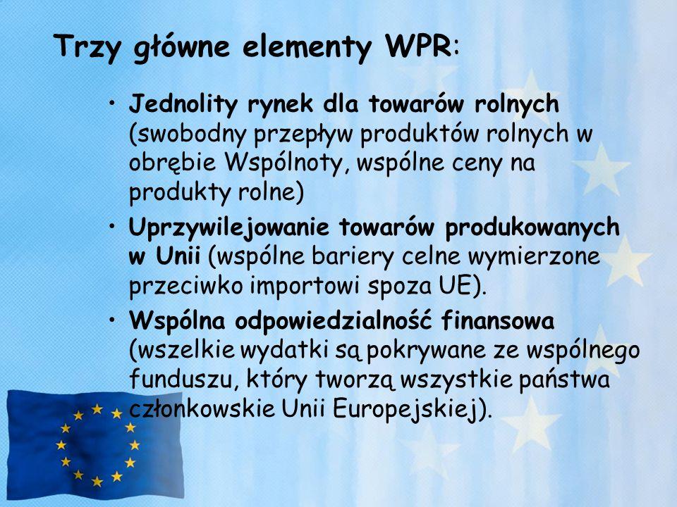 Najważniejsze elementy przyszłej strategii rozwoju rolnictwa polskiego w Unii Europejskiej: Rozwój upraw energetycznych, czyli tzw.