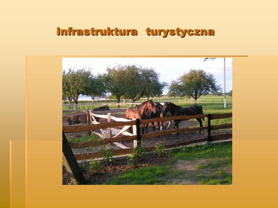 Infrastruktura turystyczna Infrastruktura turystyczna