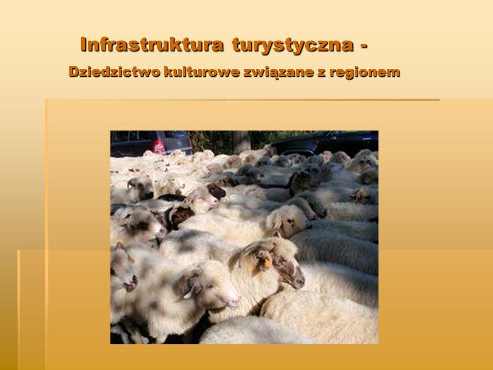 Infrastruktura turystyczna - Dziedzictwo kulturowe związane z regionem Infrastruktura turystyczna - Dziedzictwo kulturowe związane z regionem