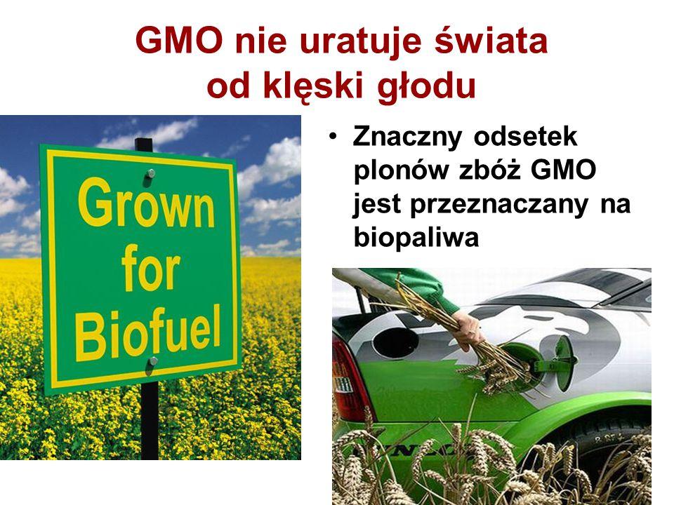 GMO nie uratuje świata od klęski głodu Znaczny odsetek plonów zbóż GMO jest przeznaczany na biopaliwa