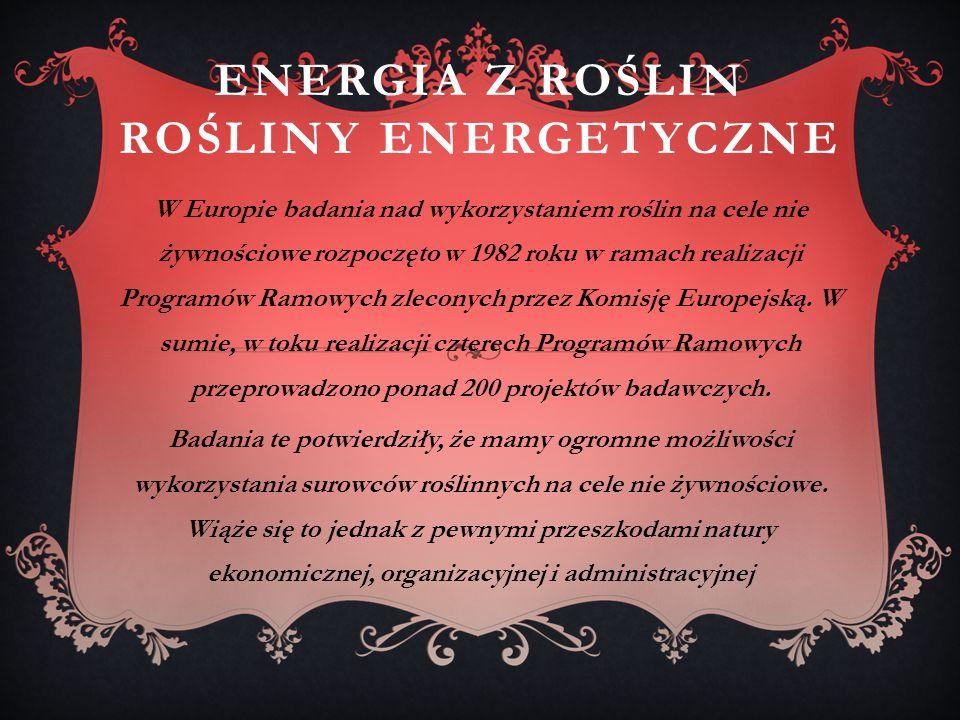 ENERGIA Z ROŚLIN ROŚLINY ENERGETYCZNE W Europie badania nad wykorzystaniem roślin na cele nie żywnościowe rozpoczęto w 1982 roku w ramach realizacji Programów Ramowych zleconych przez Komisję Europejską.