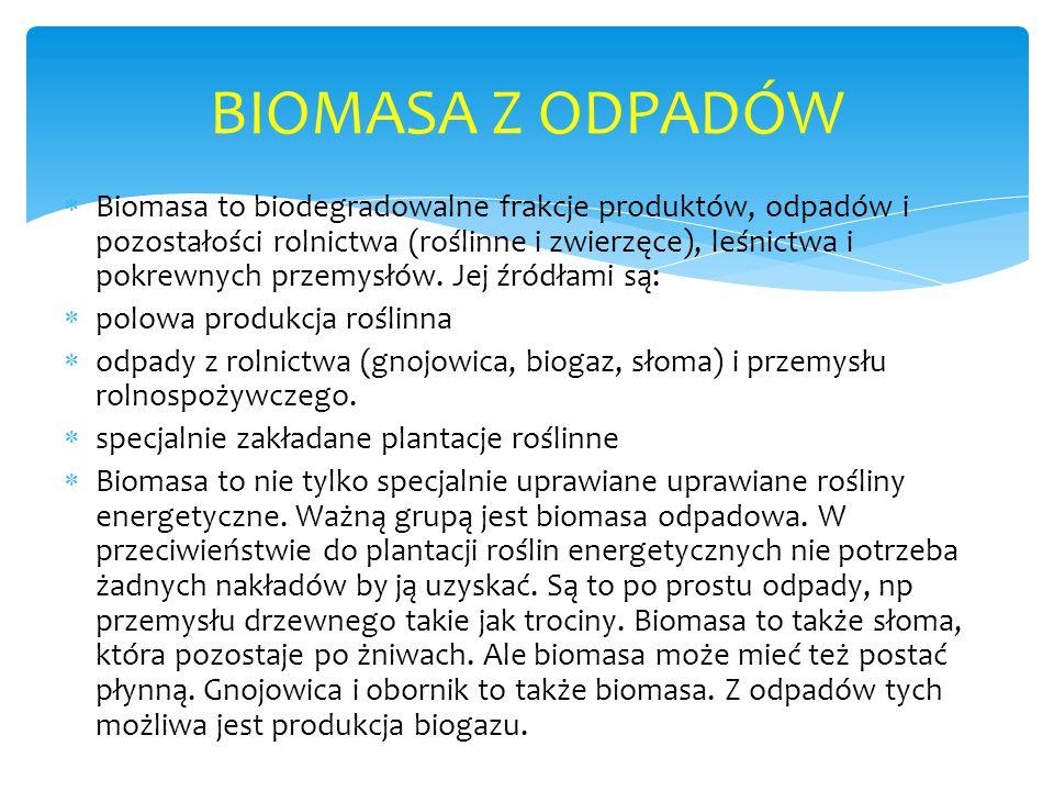  Biomasa to biodegradowalne frakcje produktów, odpadów i pozostałości rolnictwa (roślinne i zwierzęce), leśnictwa i pokrewnych przemysłów.