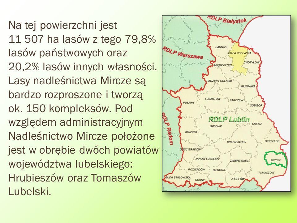 Na tej powierzchni jest 11 507 ha lasów z tego 79,8% lasów państwowych oraz 20,2% lasów innych własności. Lasy nadleśnictwa Mircze są bardzo rozproszo