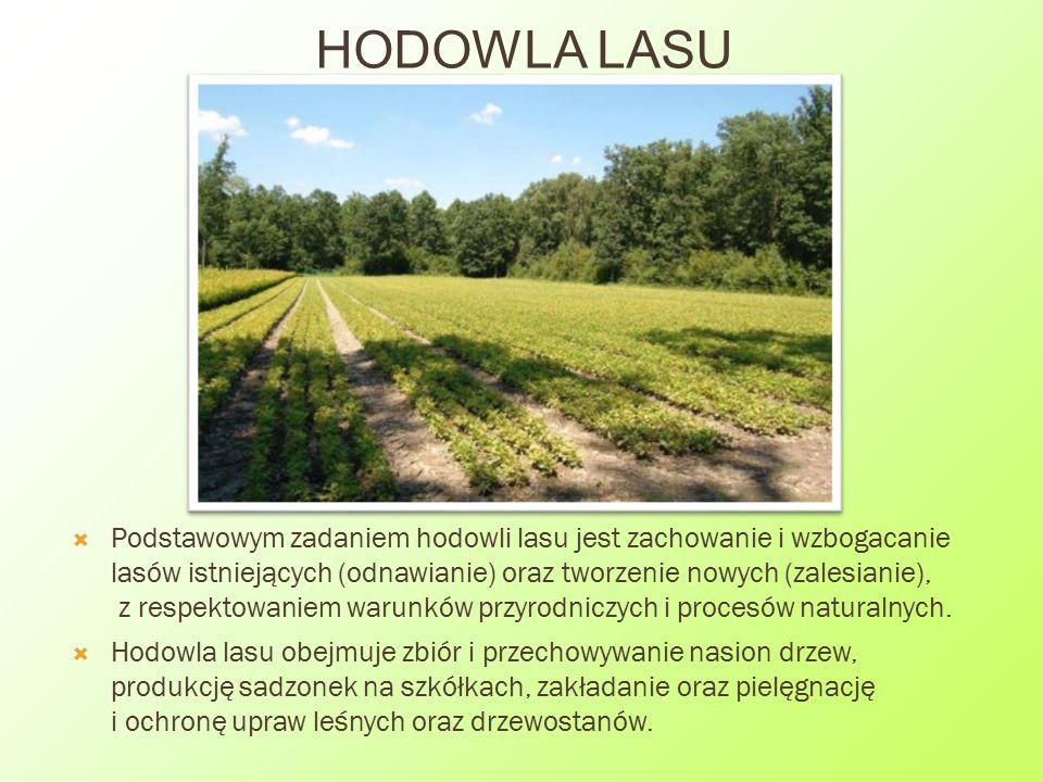  Podstawowym zadaniem hodowli lasu jest zachowanie i wzbogacanie lasów istniejących (odnawianie) oraz tworzenie nowych (zalesianie), z respektowaniem
