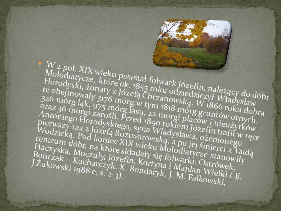 W 2 poł.XIX wieku powstał folwark Józefin, należący do dóbr Mołodiatycze, które ok.