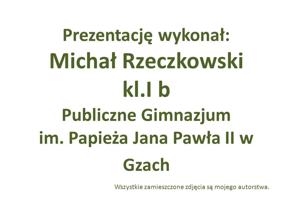 Prezentację wykonał: Michał Rzeczkowski kl.I b Publiczne Gimnazjum im. Papieża Jana Pawła II w Gzach Wszystkie zamieszczone zdjęcia są mojego autorstw