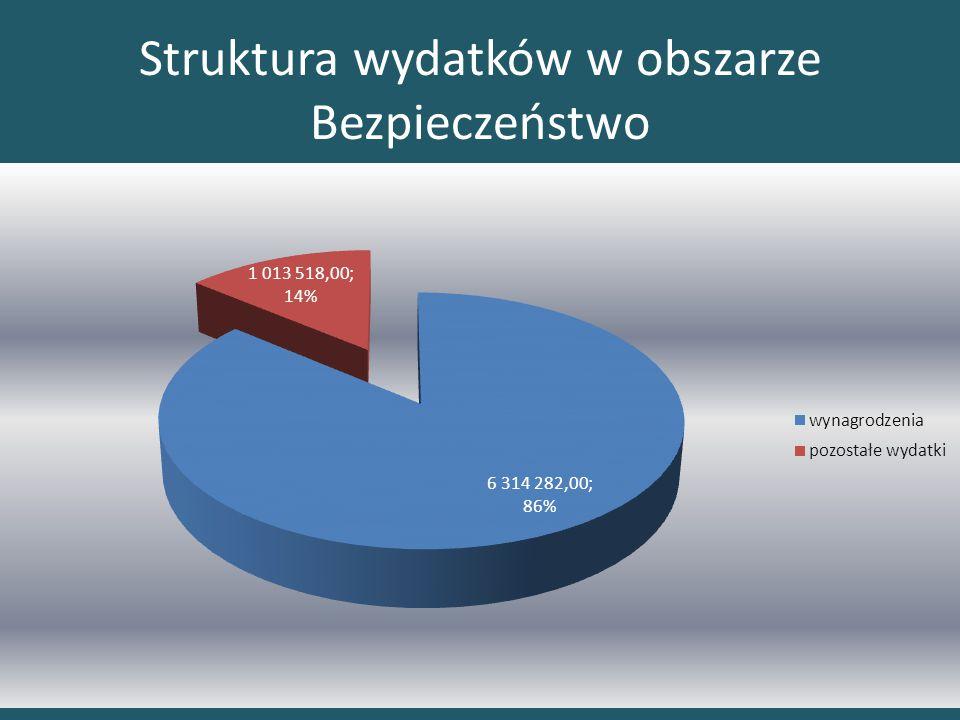 Struktura wydatków w obszarze Bezpieczeństwo