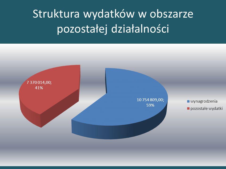 Struktura wydatków w obszarze pozostałej działalności