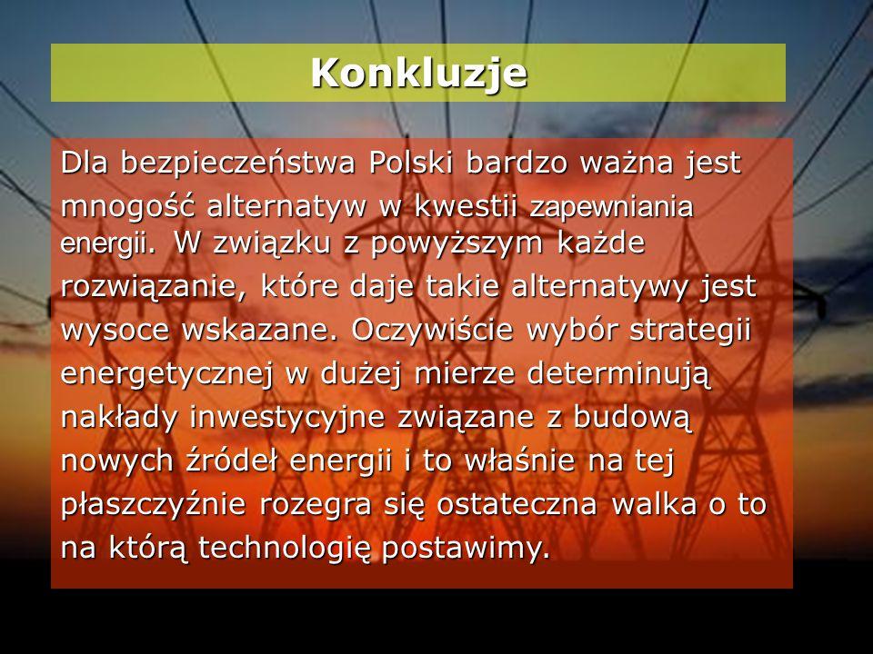 Konkluzje Dla bezpieczeństwa Polski bardzo ważna jest mnogość alternatyw w kwestii zapewniania energii.