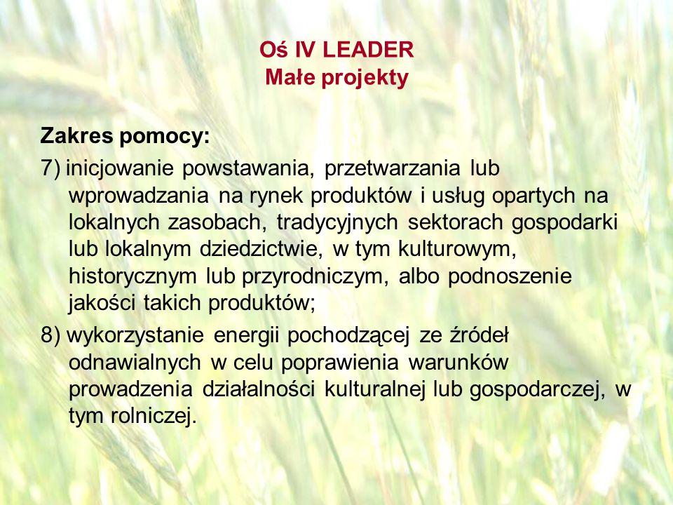 opracował: Bartłomiej Raczek44 Oś IV LEADER Beneficjenci: osoby fizyczne, które są: pełnoletnie i są obywatelami państwa członkowskiego UE, oraz zameldowane na pobyt stały na obszarze objętym LSR, lub wykonujące działalność gospodarczą na tym obszarze.