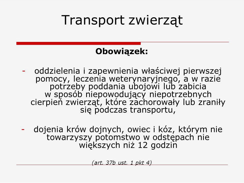 Transport zwierząt Obowiązek: -oddzielenia i zapewnienia właściwej pierwszej pomocy, leczenia weterynaryjnego, a w razie potrzeby poddania ubojowi lub