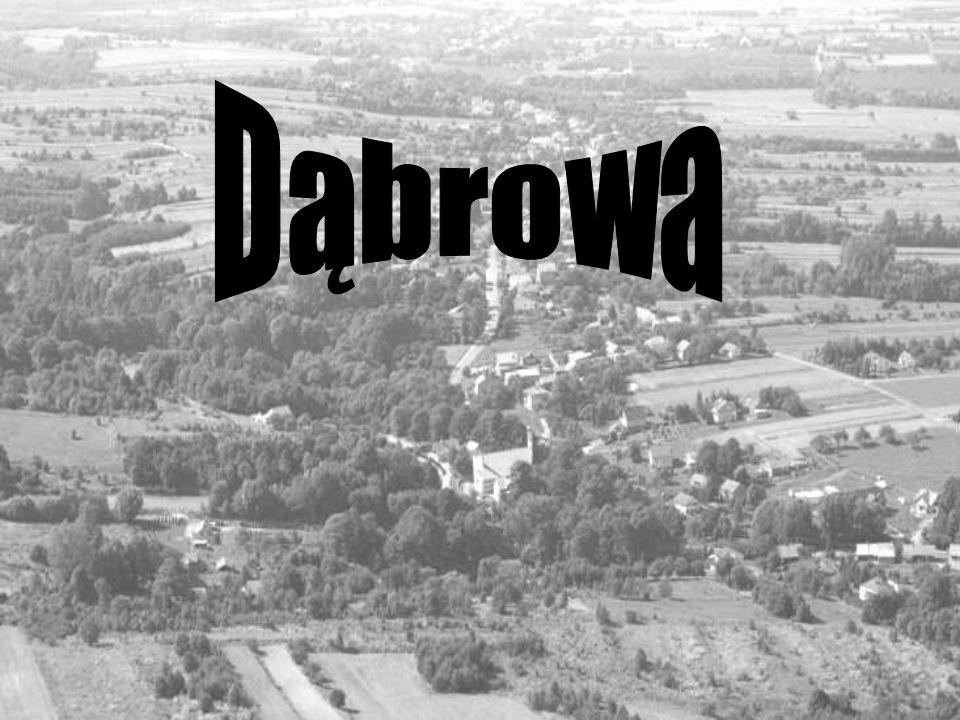 Parafia p.w.Matki Bożej Królowej Polski w Dąbrowie Duszpasterze: Ks.