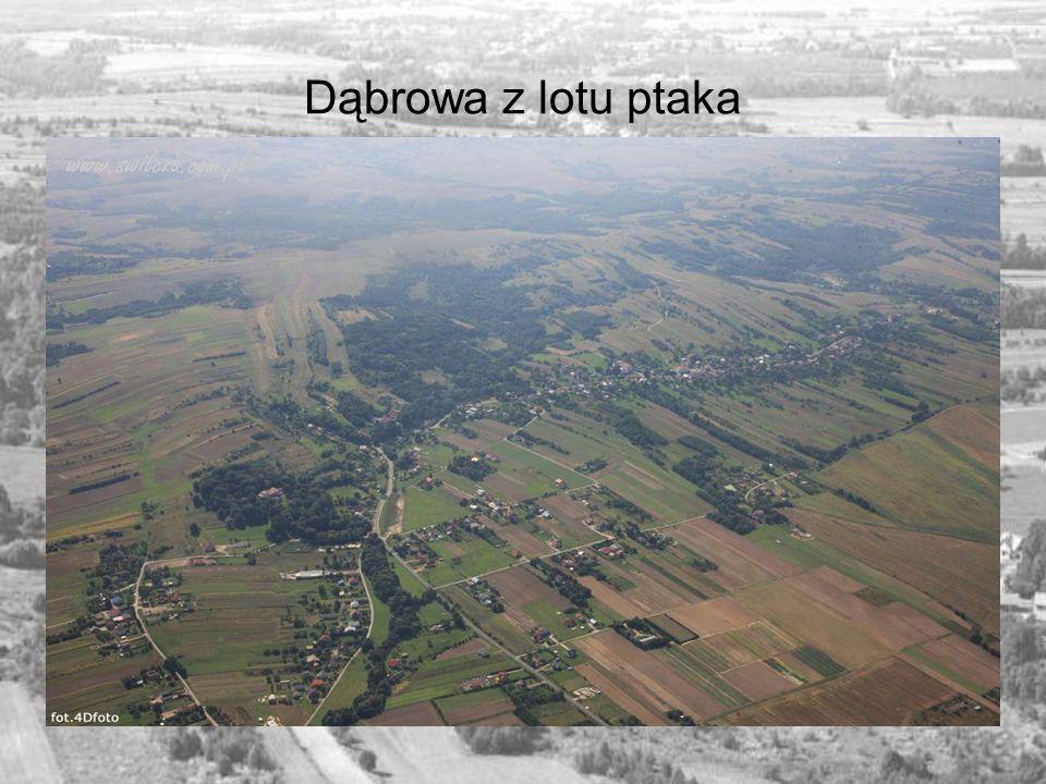 Kilka słów od autora Dąbrowa to niewielka miejscowość, ale bardzo przyjazna.
