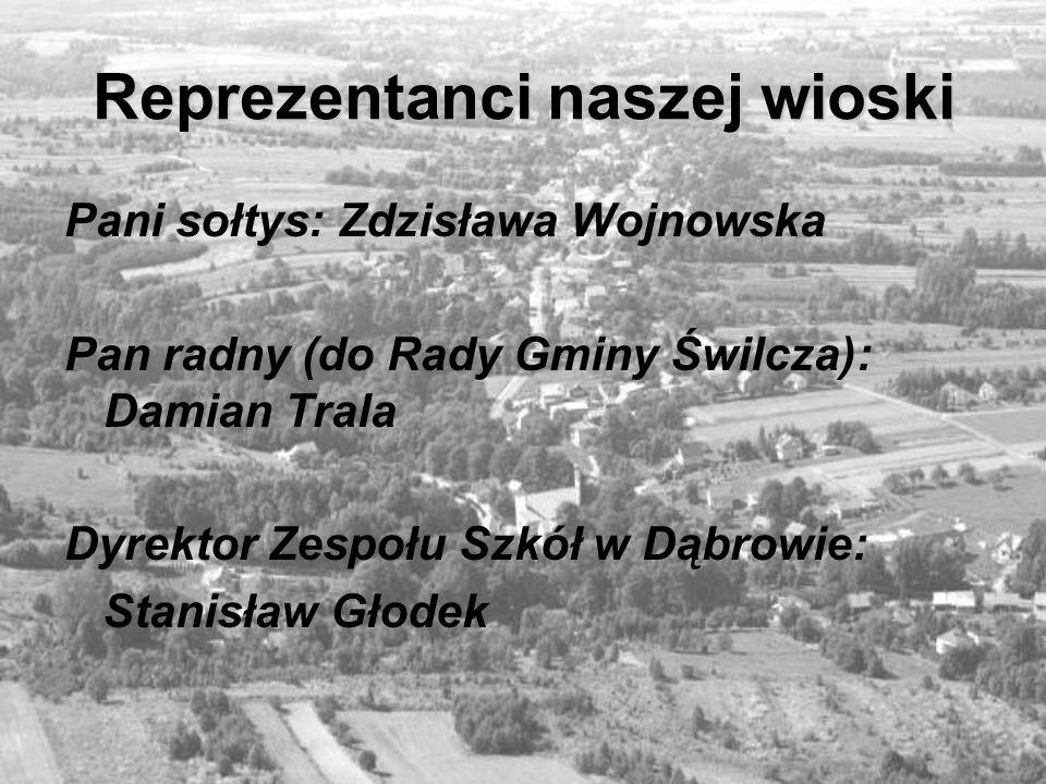 Kilka danych liczbowych Powierzchnia Dąbrowy wynosi: 791 ha Ludność: 1054 (stan na 31.12.2004r.) Na przestrzeni lat: 1786 r.: 58 domów i 432 mieszkańców 1921 r.: 175 domów i 884 mieszkańców 2004 r.: 237 domów i 989 mieszkańców