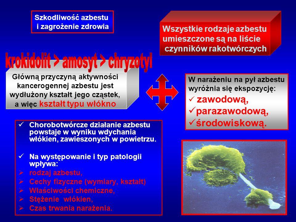 Chorobotwórcze działanie azbestu powstaje w wyniku wdychania włókien, zawieszonych w powietrzu. Na występowanie i typ patologii wpływa:  rodzaj azbes