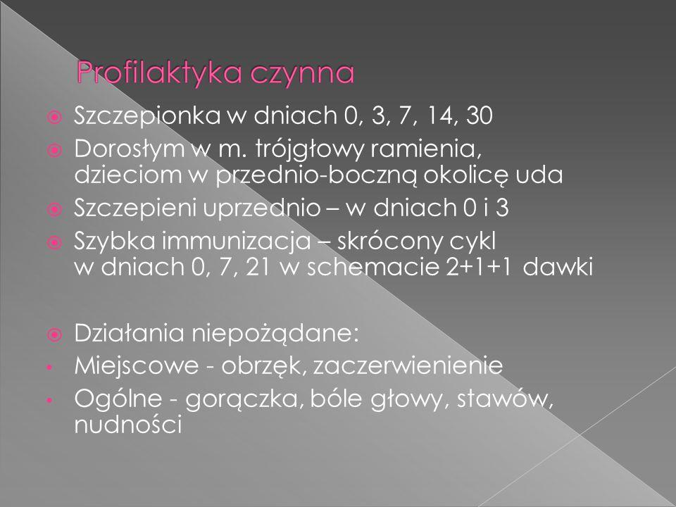  Szczepionka w dniach 0, 3, 7, 14, 30  Dorosłym w m.